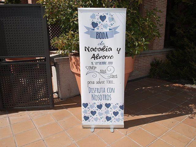 La boda de Alvaro y Natalia en Segovia, Segovia 30
