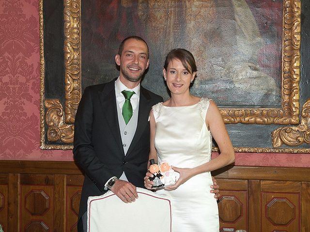 La boda de Alvaro y Natalia en Segovia, Segovia 37