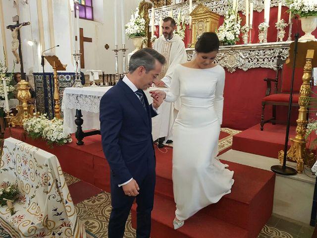 La boda de Mario y Marina  en El Rubio, Sevilla 6
