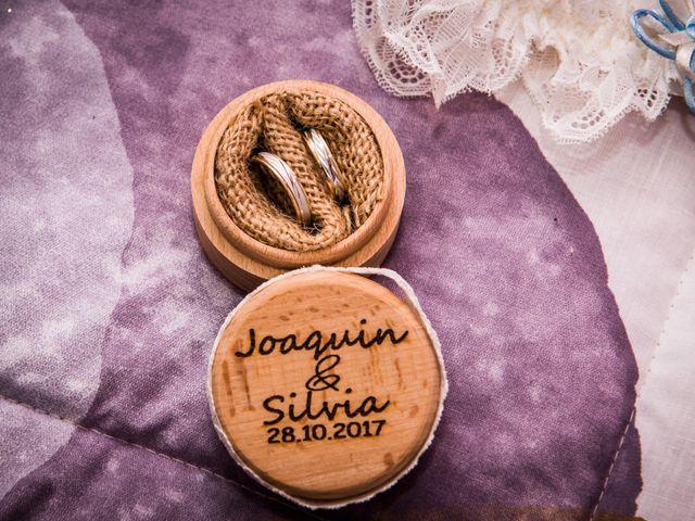 La boda de Joaquin y Silvia en Elx/elche, Alicante 11