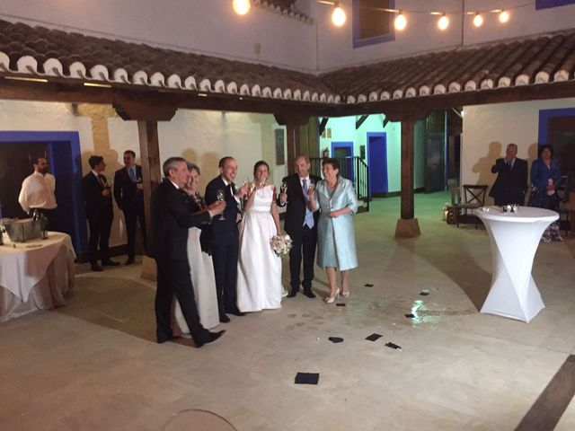 La boda de Fran y María  en Campo De Criptana, Ciudad Real 4