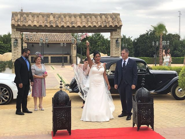 La boda de Anto  y Eva  en Moron De La Frontera, Sevilla 13