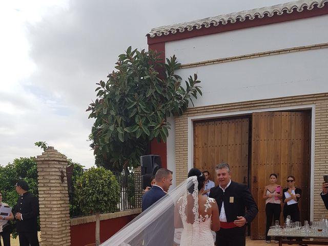 La boda de Anto  y Eva  en Moron De La Frontera, Sevilla 14