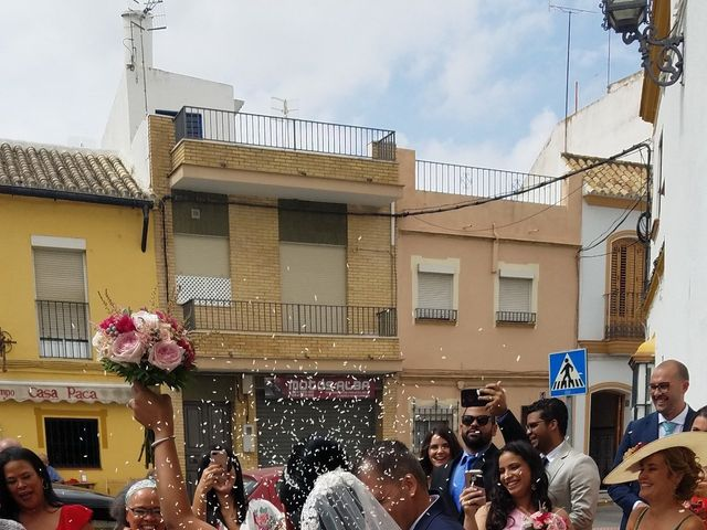 La boda de Anto  y Eva  en Moron De La Frontera, Sevilla 22