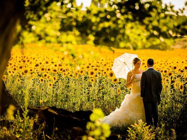 La boda de Javier y Irene en Berlanga De Duero, Soria 19