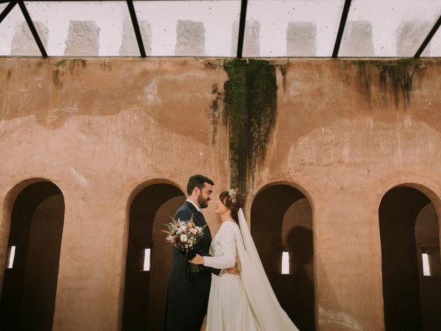 La boda de Luis y Pilar en Manzanares, Ciudad Real 10