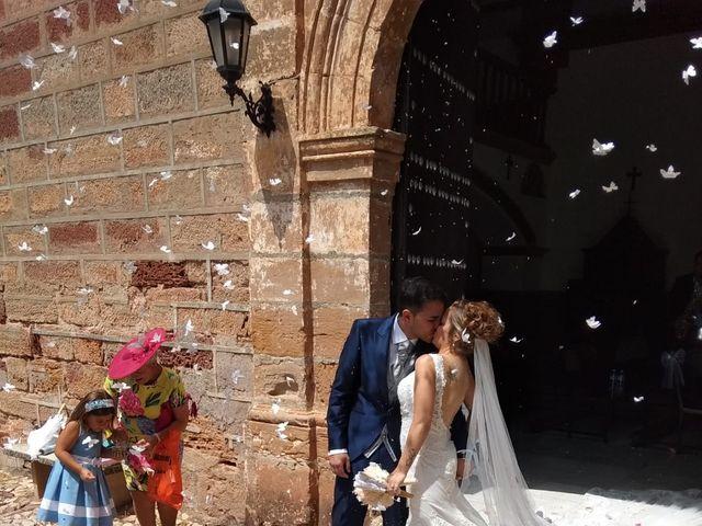 La boda de Alberto y Virginia en Linares, Jaén 2