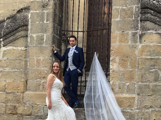 La boda de Alberto y Virginia en Linares, Jaén 19