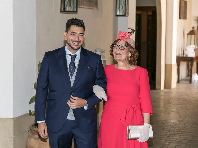 La boda de Pedro y Elena en Alcala De Guadaira, Sevilla 11