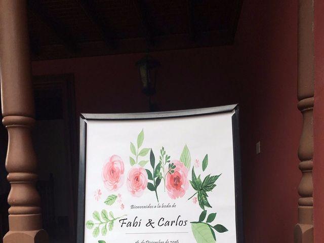 La boda de Carlos Javier y Fabianna Michelle en Santa Cruz De Tenerife, Santa Cruz de Tenerife 1