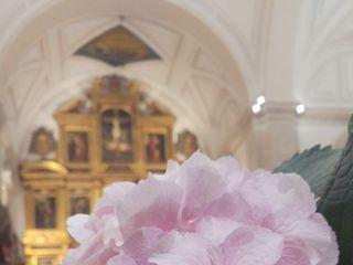 La boda de María jose y Segundo  2