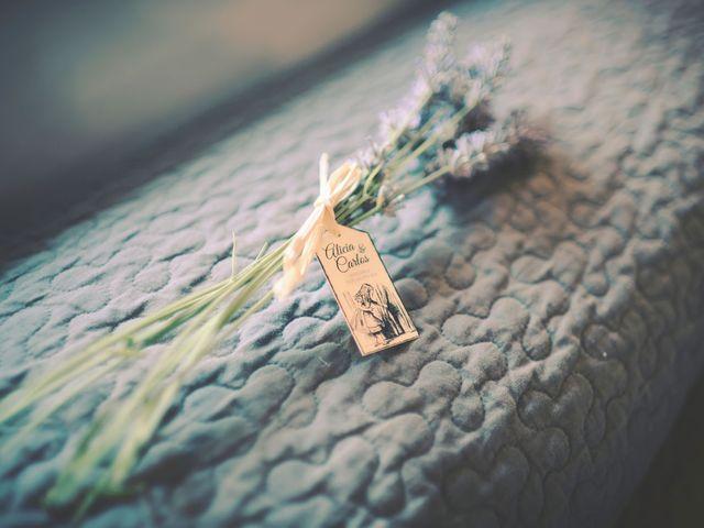 La boda de Carlos y Alicia en San Pedro Manrique, Soria 10