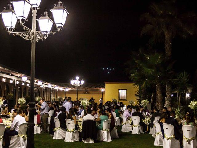 La boda de Roberto y María José en Sanlucar La Mayor, Sevilla 19