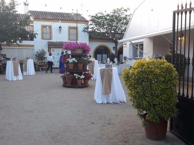La boda de Manuel y Paloma en Linares, Jaén 2