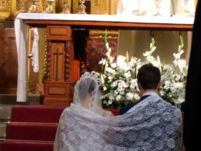 La boda de Manuel y Paloma en Linares, Jaén 7