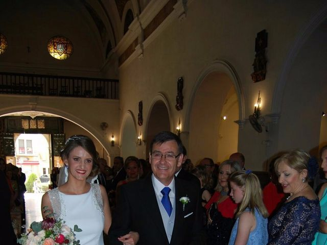 La boda de Manuel y Paloma en Linares, Jaén 9