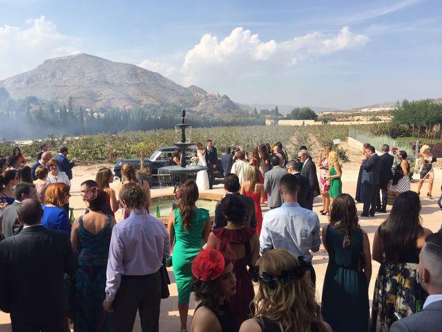 La boda de Sergio y Yolanda en Alacant/alicante, Alicante 12