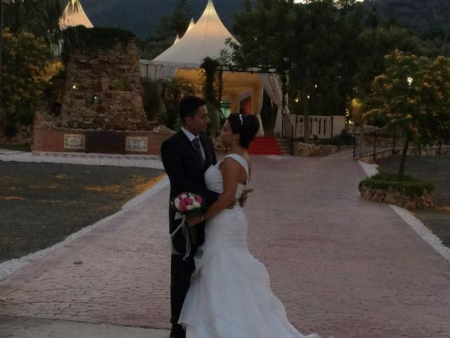 La boda de Andres y Rosa en Alora, Málaga 9