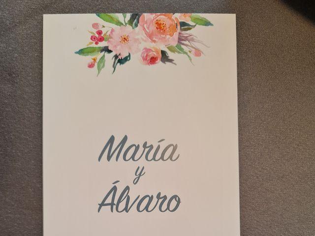 La boda de Alvaro  y María  en Palencia, Palencia 17