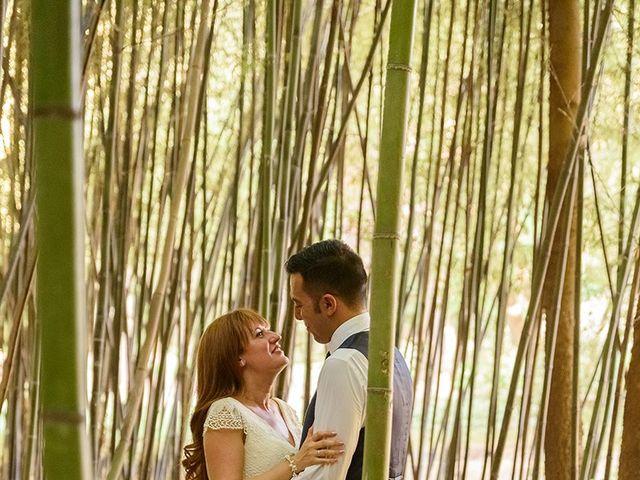 La boda de Daniel y Sandra en Navaluenga, Ávila 201