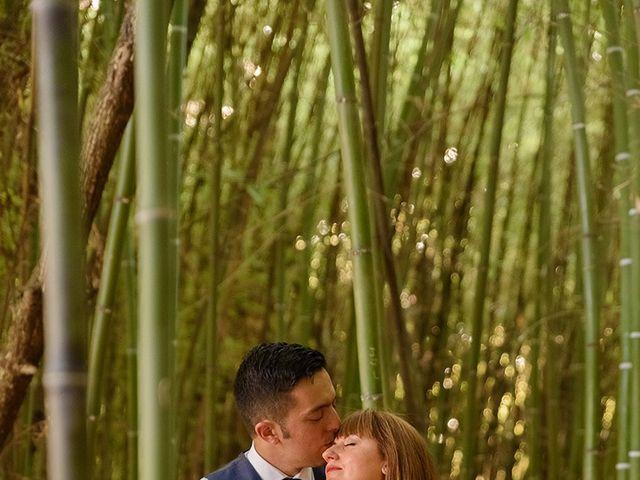 La boda de Daniel y Sandra en Navaluenga, Ávila 203