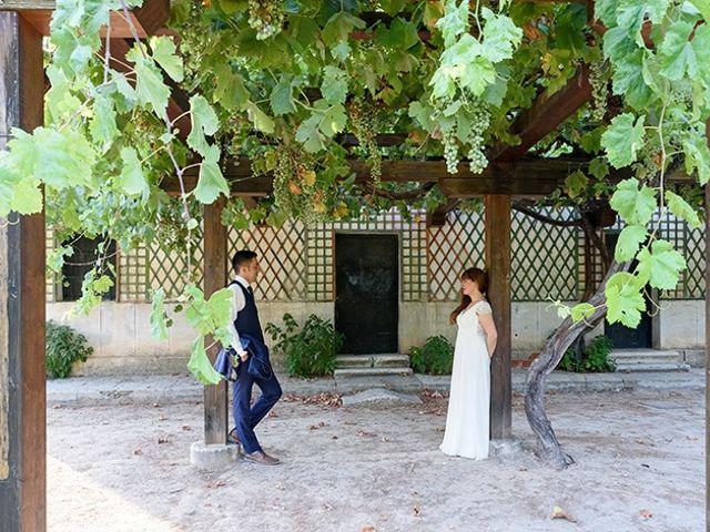 La boda de Daniel y Sandra en Navaluenga, Ávila 206