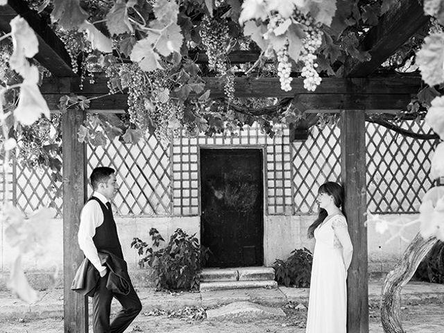 La boda de Daniel y Sandra en Navaluenga, Ávila 207