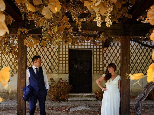 La boda de Daniel y Sandra en Navaluenga, Ávila 209