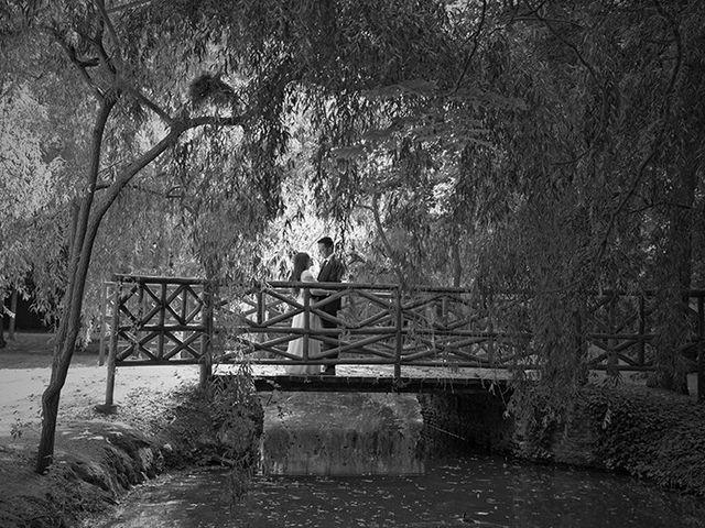 La boda de Daniel y Sandra en Navaluenga, Ávila 216