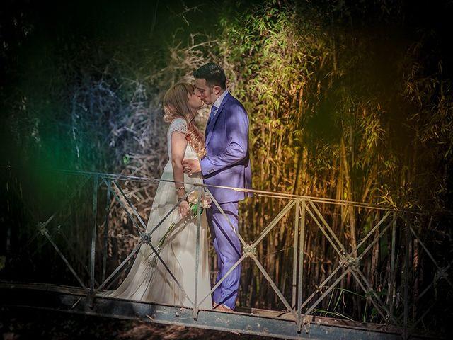 La boda de Daniel y Sandra en Navaluenga, Ávila 231