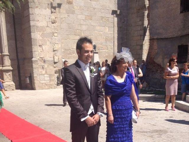 La boda de Sandra y Carlos en Peñaranda De Bracamonte, Salamanca 3