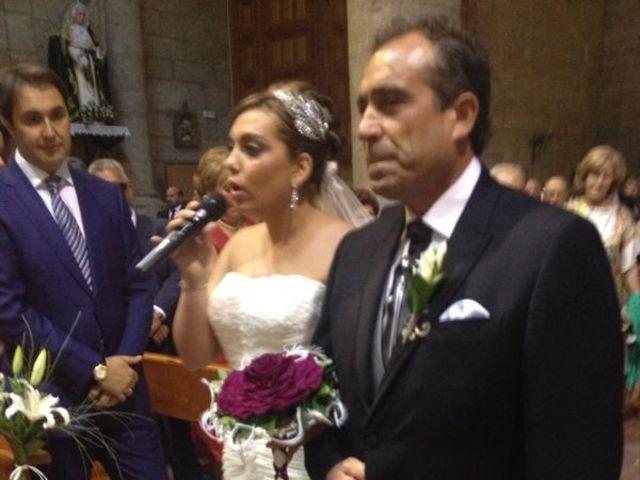 La boda de Sandra y Carlos en Peñaranda De Bracamonte, Salamanca 6