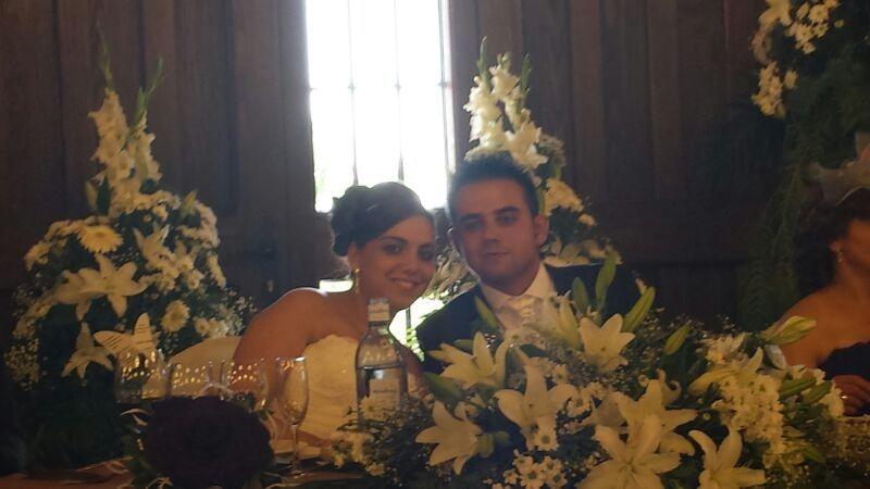La boda de Sandra y Carlos en Peñaranda De Bracamonte, Salamanca