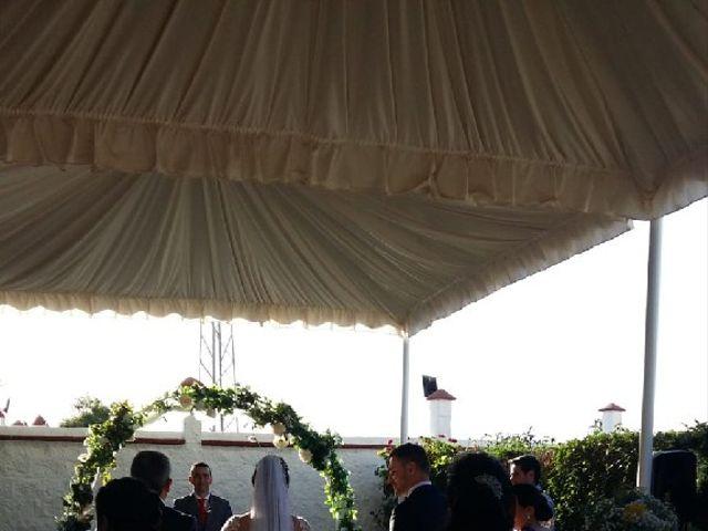 La boda de Manuel  y Mariluz en La Algaba, Sevilla 17