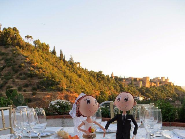 La boda de Fernando y Lucía en Granada, Granada 24