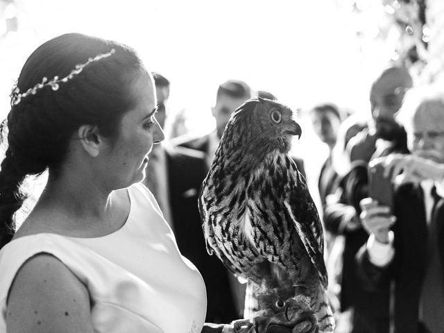 La boda de Fran y Ana en Lucena Del Puerto, Huelva 256