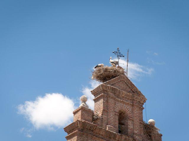 La boda de David y Elsa en Castellanos De Moriscos, Salamanca 19