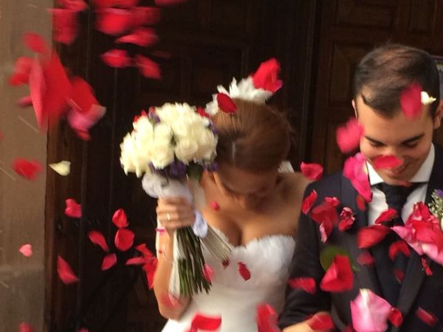 La boda de Alfonso y Soraya en Linares, Jaén 7
