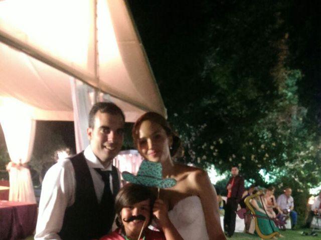 La boda de Alfonso y Soraya en Linares, Jaén 15