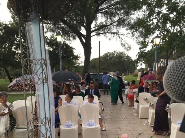 La boda de Adrián  y Betsy en Villamanrique De La Condesa, Sevilla 4