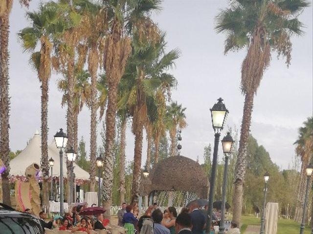 La boda de Adrián  y Betsy en Villamanrique De La Condesa, Sevilla 8