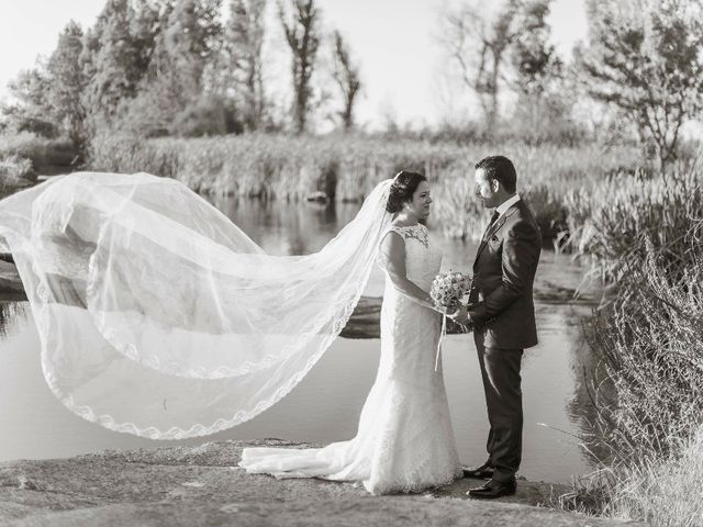 La boda de Mario  y Amparo en Valdetorres, Badajoz 2