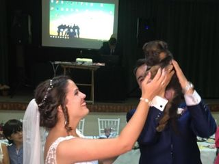 La boda de Irene y Francisco 2