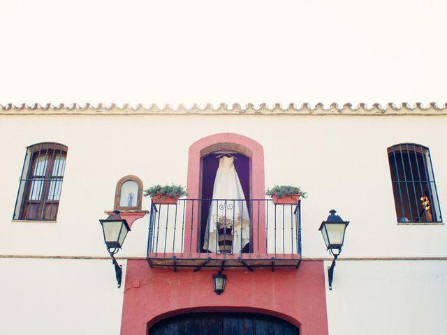 La boda de Alejandro y Anabel en Málaga, Málaga 10