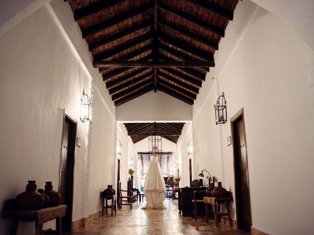 La boda de Alejandro y Anabel en Málaga, Málaga 13