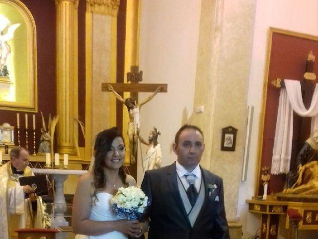 La boda de Jose y Elena en Elx/elche, Alicante 5