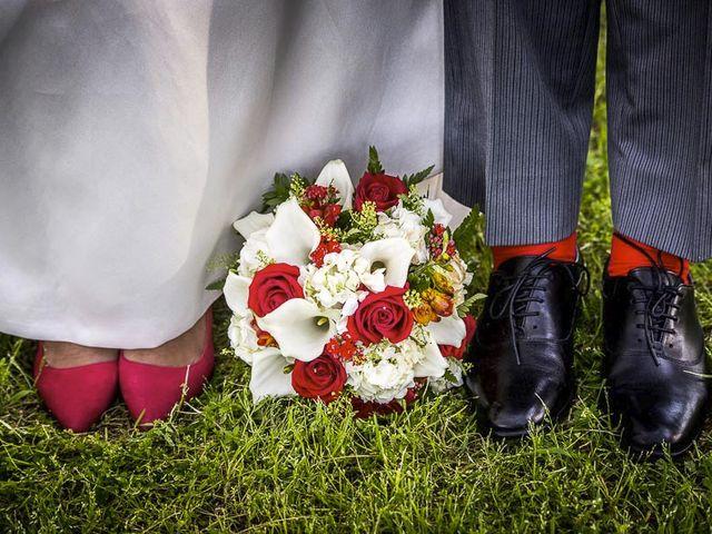 La boda de Dani y Araceli en Griñon, Madrid 1