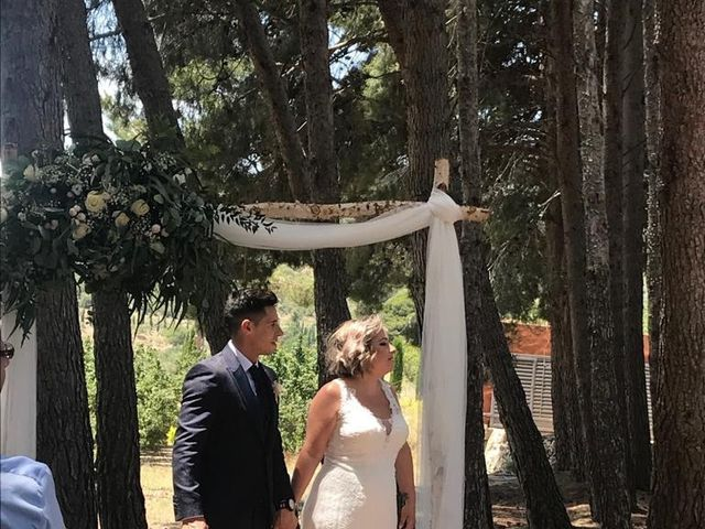 La boda de Dani y Laia en L' Albiol, Tarragona 4