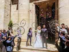 La boda de Paola y Javier 279