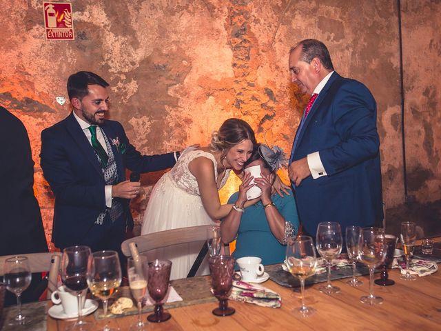 La boda de Alex y Paula en Otero De Herreros, Segovia 99